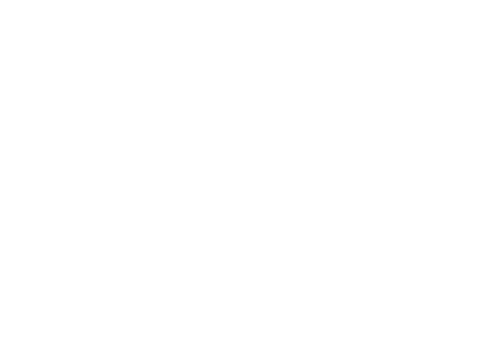 aligning people